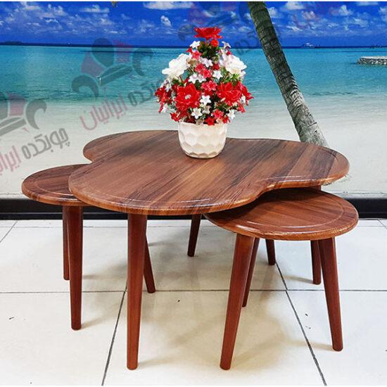 میز جلو مبلی و عسلی گشنیز وکیوم (4)